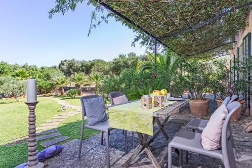 Idyllic terrace with garden views
