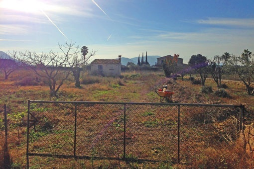 Plot with project between Alcúdia and Pollença with stunning views to the Tramuntana Mountains