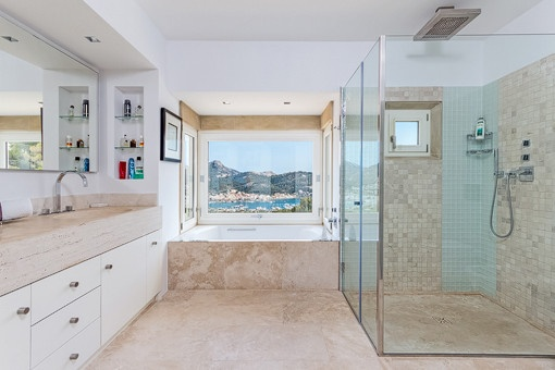 Bathroom with shower, bathtub and daylight