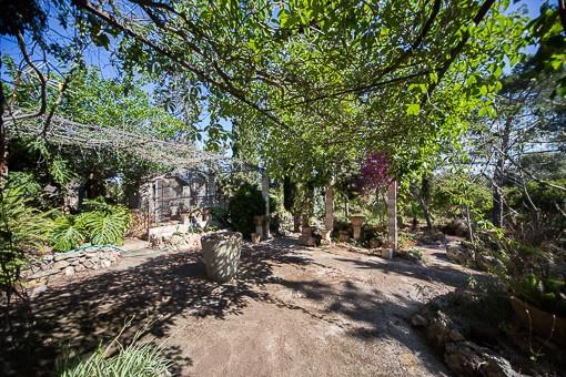 Mallorquin garden