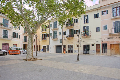 Lovely bright ground floor apartment in the old town of Palma