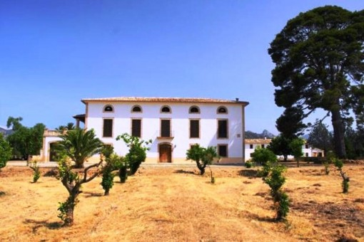 Superb rustic Finca with more than 1 million sqm of land and a lot of potential