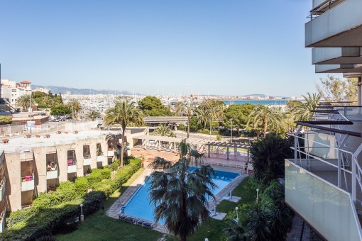Beautiful little apartment in a residential complex with pool centrally located on the Paseo Maritimo