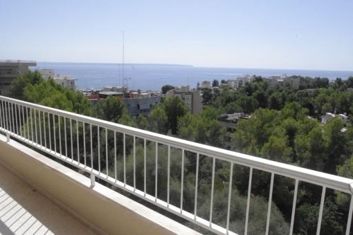 Appartement à Palma Surroundings