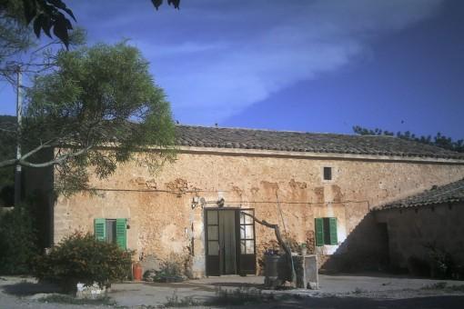 Terrain à Santa Eugenia