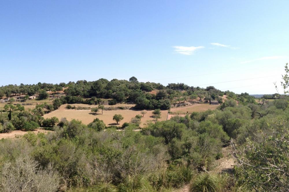 Beautiful plot of land near Porreres with panoramic views