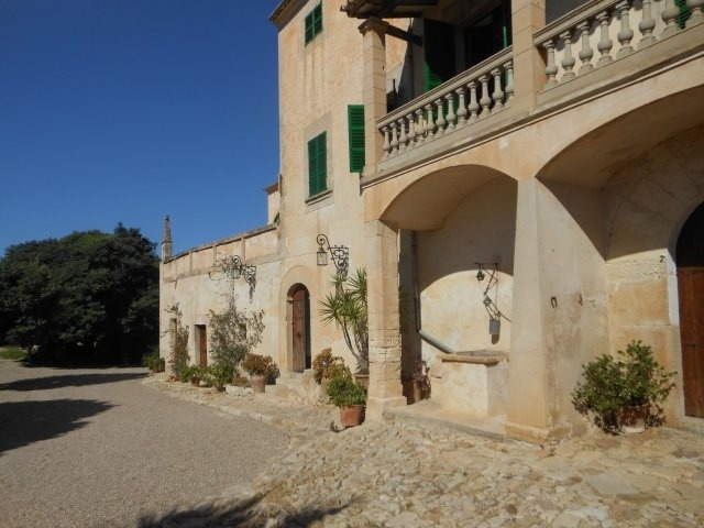 wonderful apartment in a finca in the middle of Mallorca