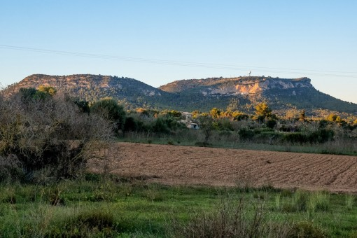 Large finca building plot with project in Llucmajor