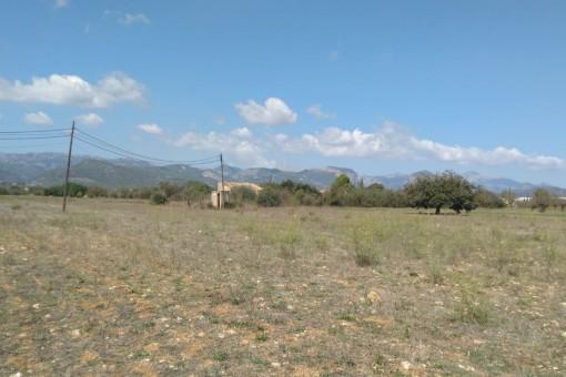Terrain à Santa Maria del Cami