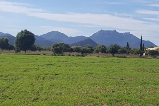 Terrain à Cales de Mallorca