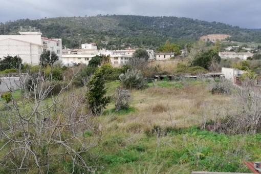 Terrain à Lloseta