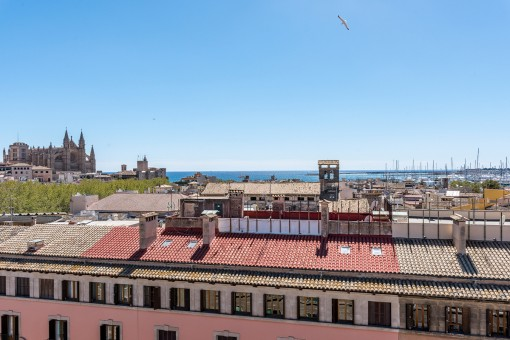 Charming, elegant apartment in spacious 50's style in a prime location in Palma